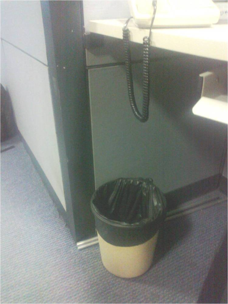 10 Alternate Uses for the Office Dustbin (4/4)