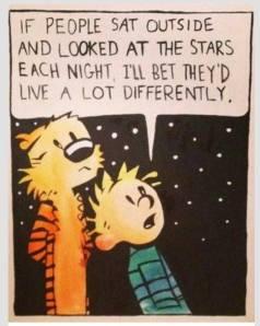 Calvin Stars