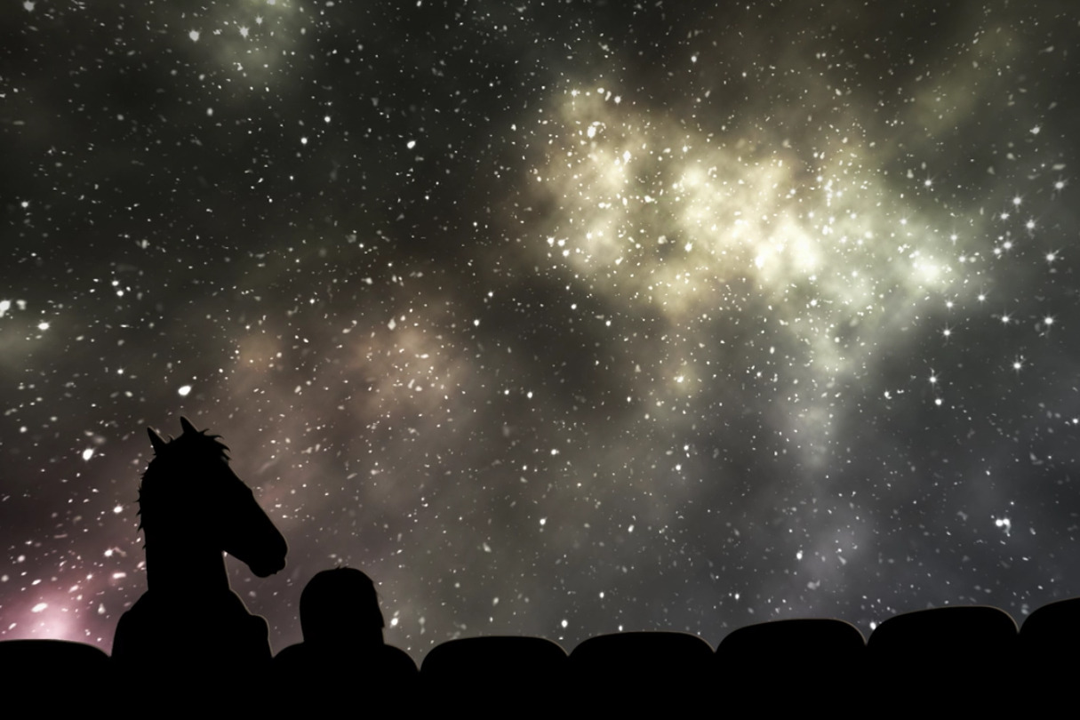 bojack horseman planetarium